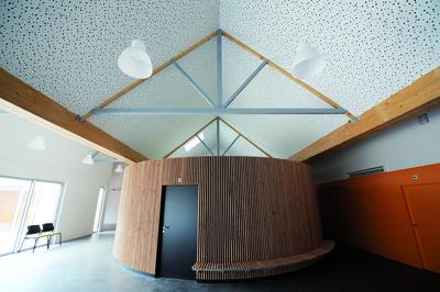 Rigitone®Activ'Air® 8-15-20 Super   Plafond décoratif Rigitone 8-15-20Super à la Maison d'accueil spécialisée de Grandchamp des Fontaines